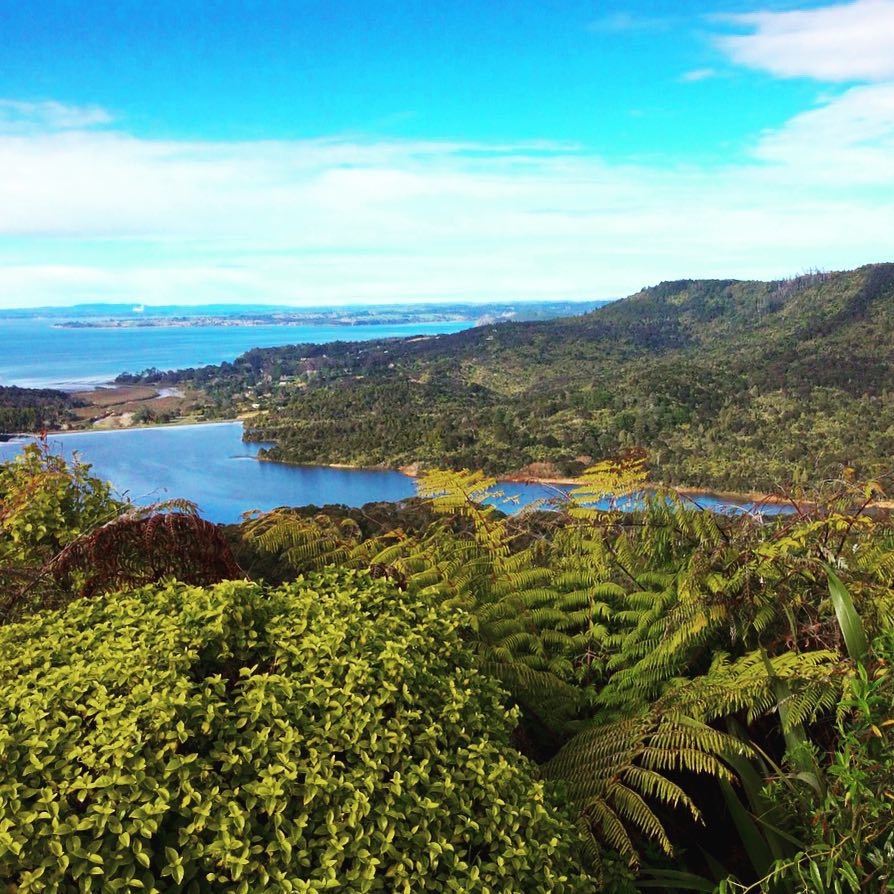 View from The Waitakere Ranges Regional Park in New Zealandhellip