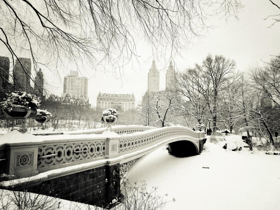 top-10-photos-new-york-sous-neige-L-6iHzXG Top 10 des photos de New York sous la neige