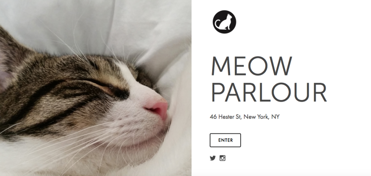 meow-parlour New York, a source of inspiration #6